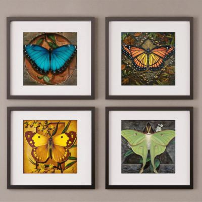 Four Elements Collection – Limited Edition Giclée Prints