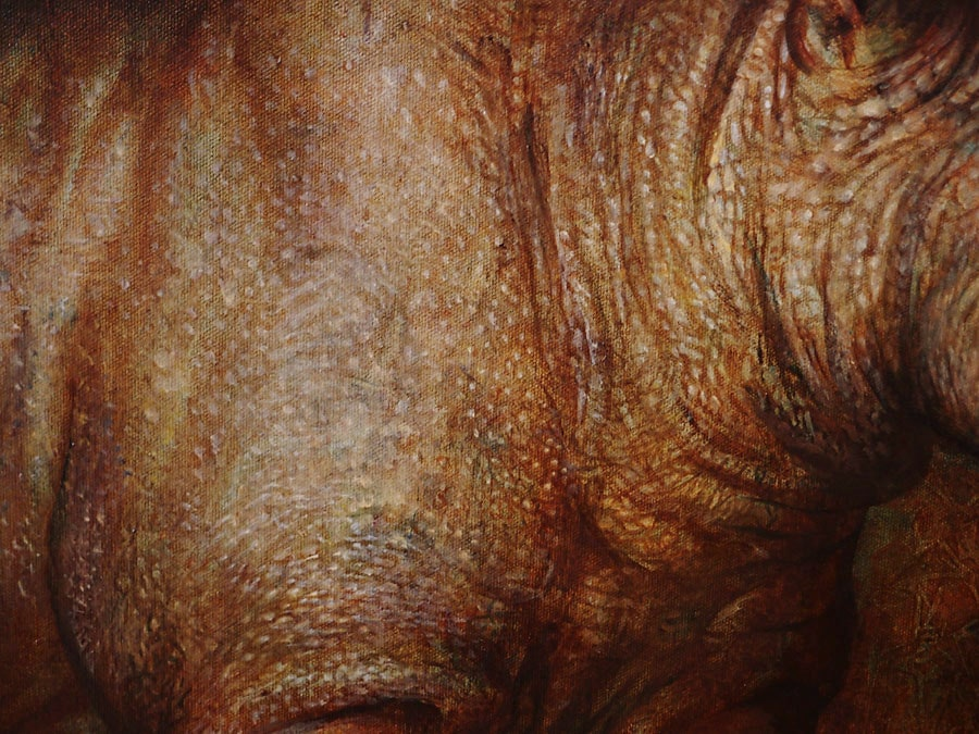 WIP - Detail: Black Rhino Skin
